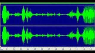 """OLD INVESTIGATION - EVP Clip #13 - """"we need some help""""???"""