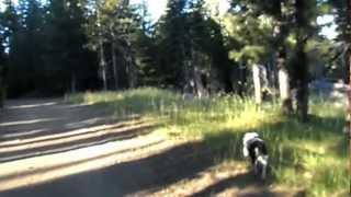 """Bear River Reservoir - Part 12 """"Twin Ridges"""""""