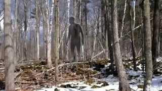 SHADOW PEOPLE are REAL - Evidence and Proof (Paranormal Supernatural)