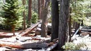 "D.L. Bliss State Parks Rubicon Trail - Part 19 ""A Strange Shelter Of A Find"""