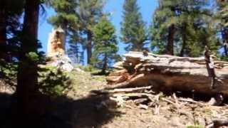 "Noble & Bull Lake - Part 3 ""Stanislaus National Forest"""
