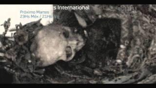 Ghost Hunters International - Temporada 2 -- Episodio 21