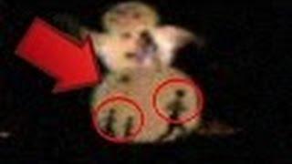 Strange Alien Hybrid Creatures Caught On Camera On Christmas | Alien Family NEW REAL
