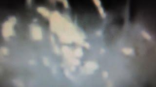 Three Bigfoot From Upcoming Video Bigfoot Mind Hunter