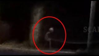 Alien Or Ghost Like Creature Sitting Near A Tree!! Paranormal Activity