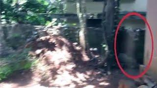 Real Ghost Caught On Tape | Ghost Hunting | Real Ghost Story | Scary Videos