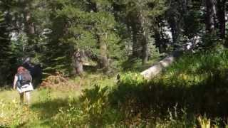 """Meiss and Round Lake -  Part 10 """"Something Big Came Through Here"""""""