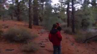 "Indian Creek Reservoir - Part 6 ""Adventuring Into The Toiyabe National Forest"""
