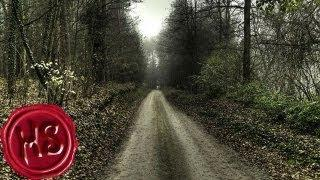 A Haunting in the Woods (Haunting Season - Story 02)