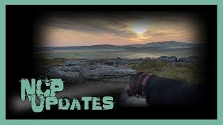 NCP Catch Up | Dog Walking on Bodmin Moor