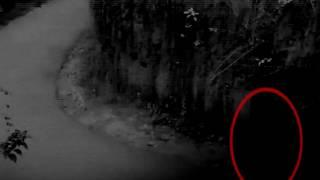 Scary videos, Ghost Caught on CCTV camera From A Haunted Forest Road - Haunted Palace