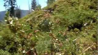 """Bear River Reservoir - Part 24 """"Hidden Track"""""""