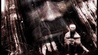 Sasquatch People, Bigfoot, Yeti , Alien Connection - Truth Revealed