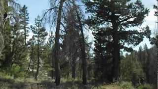 "Highland Lakes - Part 42 ""Hidden Falls"""
