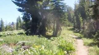 "Thunder Mountain and Silver Lake - Part 5 ""Is Bigfoot Yelling In A Meadow With A View"""