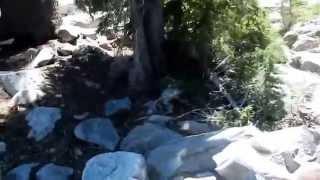 "Five Lakes Granite Chief Wilderness - Part 8 ""Lake #4"""