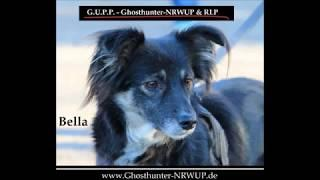 Bella's Erlebnisse - Geisterjäger / Ghosthunter-NRWUP & RLP