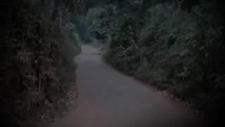 Scary videos, Ghost caught on camera from a road , Incredible Ghost Footage - Ghost Hunters