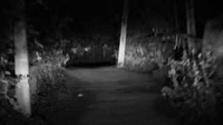 Scary Videos of Ghosts Caught on Tape | Ghost on Haunted Road | Ghost Sightings