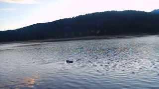 """Indian Creek Reservoir - Part 4 """"Birds Of Prey"""""""