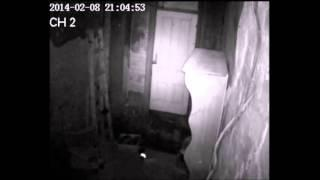Paranormal Investigation of a Private House, The Rocks, Sydney