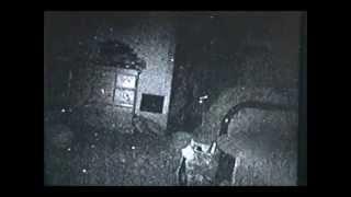 Orbs: Captured On IR Video