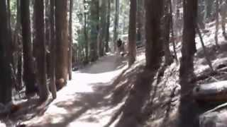 "D L  Bliss State Parks Rubicon Trail - Part 10 ""The Descent Into ElDorado Forest"""