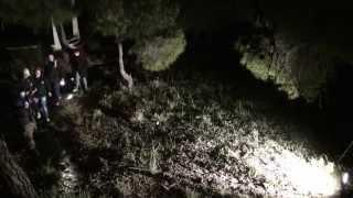 HAUNTED FOREST SALAMIS GREECE