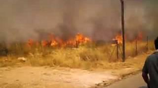 Fire in Attica Greece August 2009