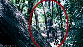 Real Ghost Caught on Camera From a Forest !! Shocking Paranormal Activity Footage, Scary Videos