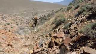 "Johntown NV and Gold Canyon - Part 6 ""Traversing Red Rock Gulch"""
