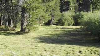 """Highland Lakes - Part 44 """"Round Em Up Rascal"""""""