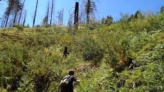 """Bear River Reservoir - Part 23 """"Welcome To The Jungle"""""""