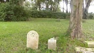 Cemetery on property of old home from the 1800's--very interesting!!