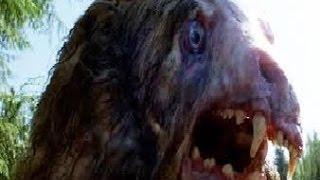 Giant Mutant Monster Bears (SHOCKING MONSTER Paranormal Documentary)