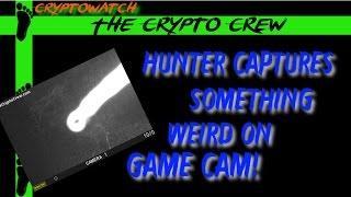 Hunter Capture Something Weird On Game Cam
