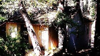 Keddie Murders | Unsolved Murder Mystery of a Family!