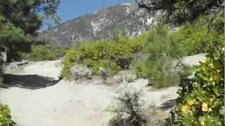 "Jobs Peak - Part 28 ""Traversing Luther Canyon"""