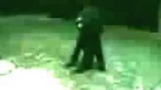 Πραγματικό;Βίντεο με λυκάνθρωπο στην Αργεντινή