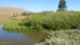 """Meiss and Round Lake - Part 3 """"Lake? It Is More Like A Pond"""""""