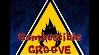 """One Love"" by Combustible Groove"