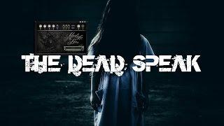 Paranormal Voice | SPIRIT VAILDATION | THE DEAD SPEAK | Spirit Box Session 12 | Afterlight Box