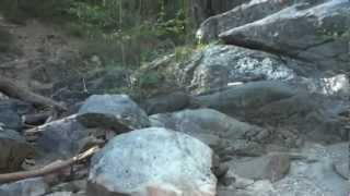 """Calaveras Big Trees Part 8 - """"Track Finding Along The Stanislaus River"""""""