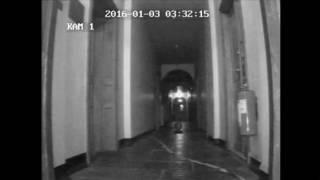 Spöke fångas på övervakningskamera i Kronovalls Vinslott LaxTon Ghost Sweden Spökjägare