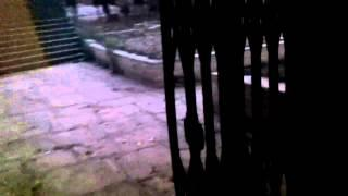 Real ghost activity caught on tape   Scary ghost adventures   Real paranormal activity1