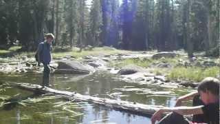 """Forestdale Divide - Part 3 """"Hidden Pond"""""""