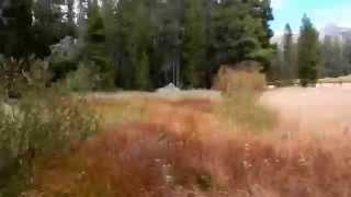 "Burnside Lake - Part 9 ""Maze Of Dry Creeks"""