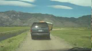 "Dangberg Ranch Part 1 - ""Traversing That Dirt Road Into Cattle Country"""