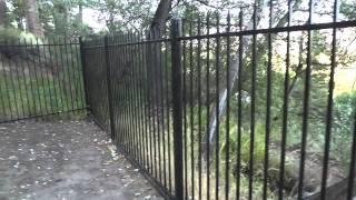 "Bowers Mansion Part 2 ""Cemetery Ghost Walk & Historic Tour With Lord Rick"""