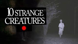 10 Mysterious and Strange Creatures Caught on Tape